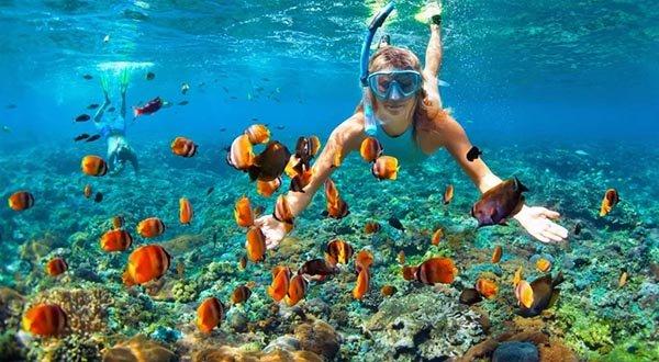 snorkeling Maldive febbraio
