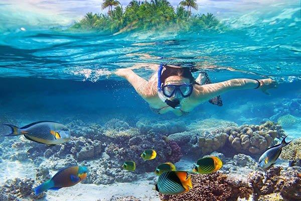 Snorkeling Dicembre Maldive