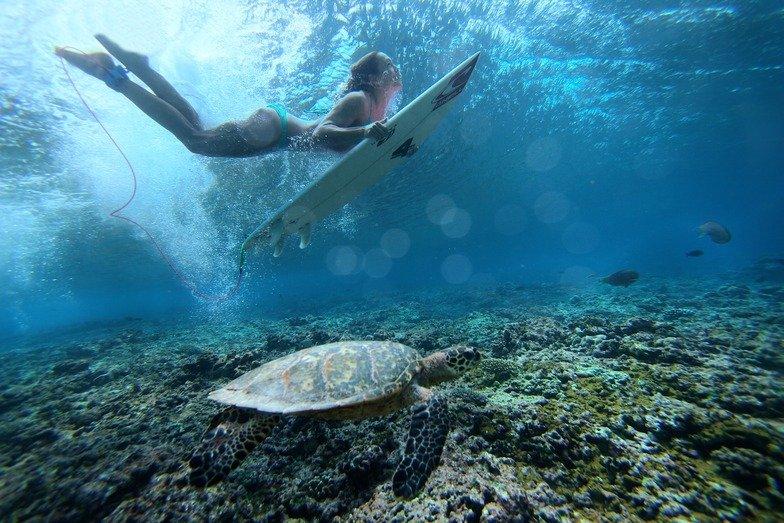 Surf-alle-Maldive